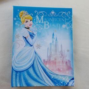 Disney Cinderella Canvas